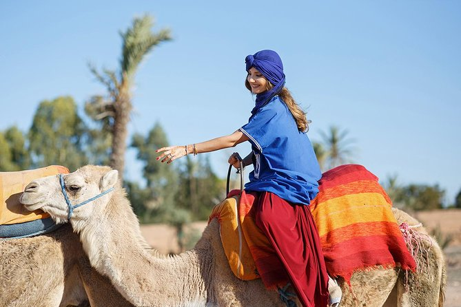 Camel Ride in Palm Groves with Tea Break