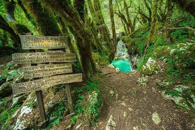 Hiking in canyon Mrtvice and Biogradska Gora National Park