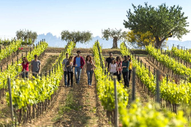 El Penedès Hike & Wines. Premium Small Group Tour with a local guide.