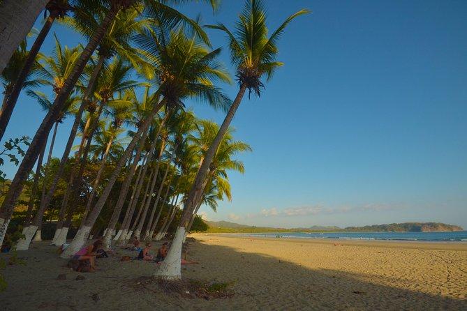Spanish school beachfront view