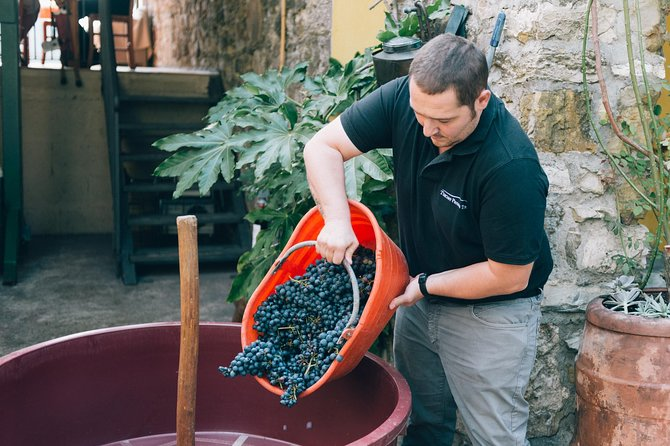 Grape stomping in Tuscan farmhouse photo 13