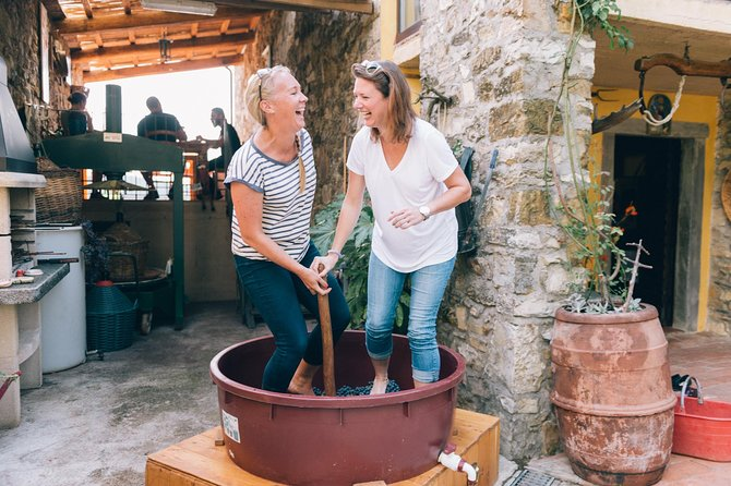 Grape stomping in Tuscan farmhouse photo 1