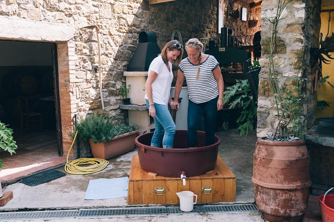 Grape stomping in Tuscan farmhouse photo 7
