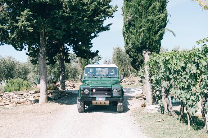 Off Road 4WD wine tour photo 7