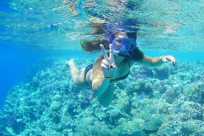 Giftun Island Snorkeling Day Trip From Hurghada photo 9