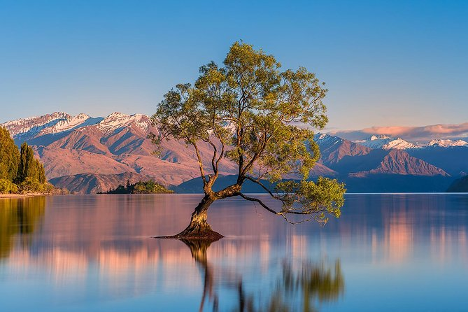 Queenstown to Wanaka Private Luxury Day Tour
