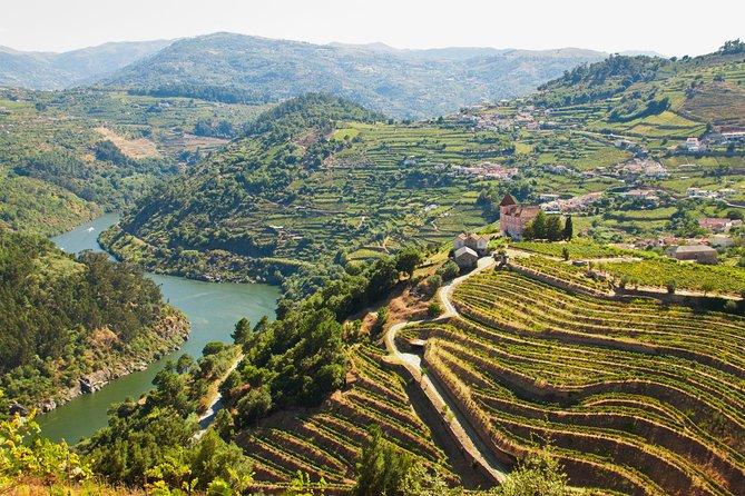 Excursão particular de dia inteiro pelo Vale do Douro com almoço e degustações de vinho