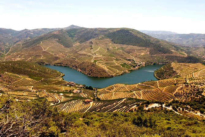 Douro Valley Full Day Tour with Lunch and Wine Tastings