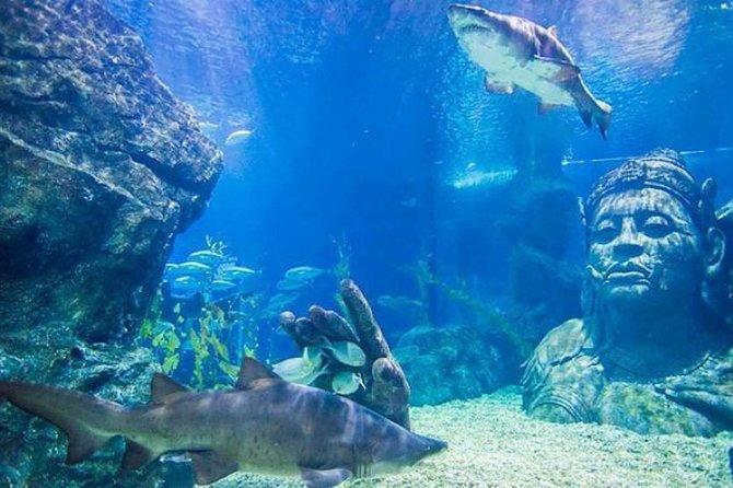 Sea Life Bangkok Ocean World (Worldwide Except Thai)