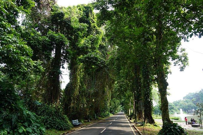 (Seat In Coach) Jakarta - Bogor - Bandung 2 Days 1 Nights Overland Tour