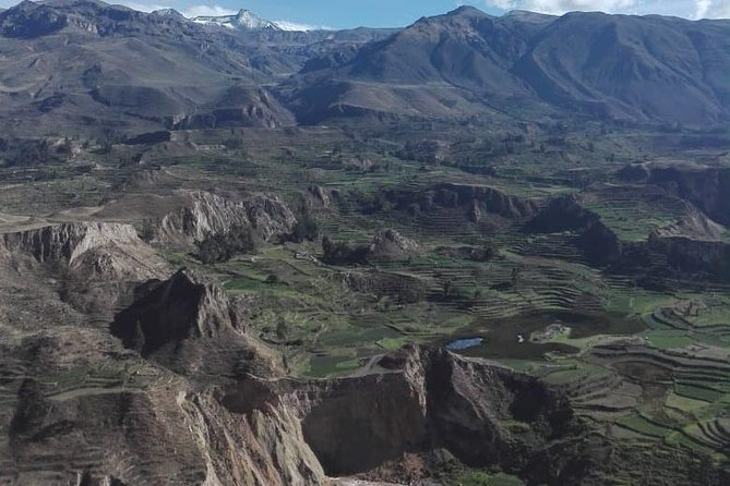 Colca Canyon Sightseeing Tour 2D1N and Transfer to Puno