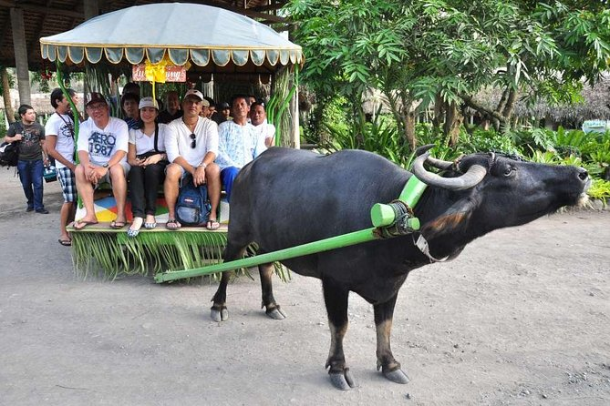 VILLA ESCUDERO DAY TOUR with Carabao Cart Ride and Bamboo from Manila photo 6
