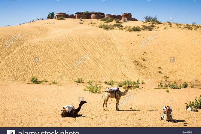 jodhpur day tour with camel safari photo 4