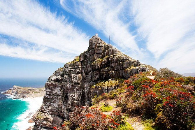 Sacred plant Inspired nature walk in Cape Point Reserve