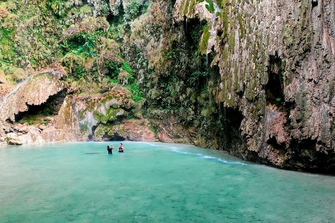 Oslob Whale Shark Watching, Kawasan Falls and Tumalog Falls from Cebu