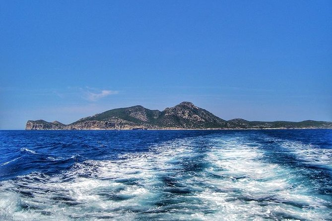5-hours Cruise to Dragonera Island photo 18