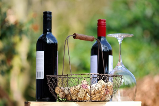 Istrian Wine Story - Private wine tasting tour from Rovinj