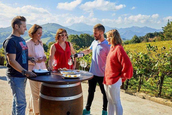 Txakoli winery small group tour with tasting in Getaria and Zarautz