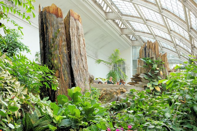 Schmetterlinghaus - Imperial Butterfly House Vienna Admission Ticket