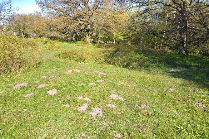 Ängakåsen gravefield - an expreience in the dusk