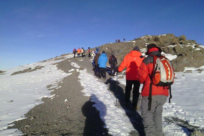 7days Kilimajaro Climb _machame Route