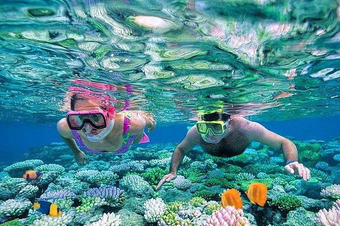Giftun Island Full day Snorkeling Sea Trip - Hurghada