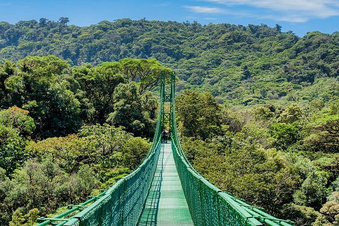 Hanging Bridges Guided Tour at Selvatura Park