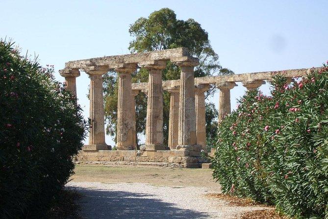 Tour guide Metapontum: Impressive Greek Ruins along the Basilicata's coast