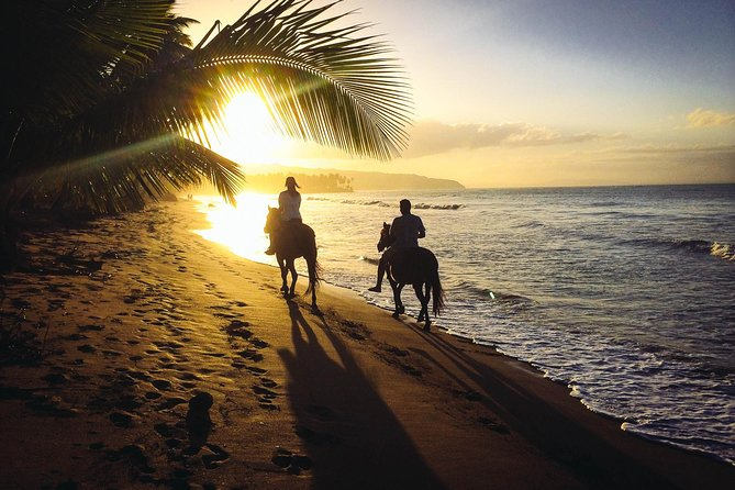 Sunset Horseback Riding Tour from Punta Cana