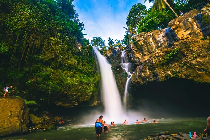 Bali Swing Combination With Tegenungan Waterfall & Luwak Coffee