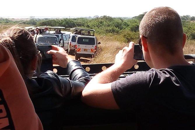 2 days safari Tsavo National parks tour