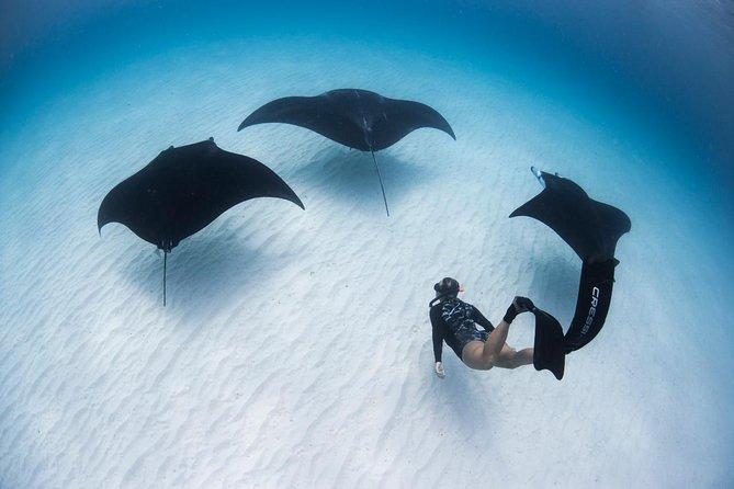 Nusa Penida Snorkeling Safari