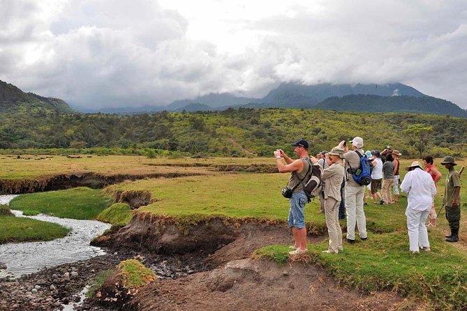 Arusha National Park Game drive and Walking Safari Day Tour