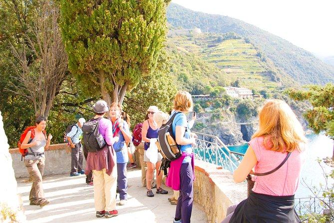 Half Day Walking Tour on the Via Francigena
