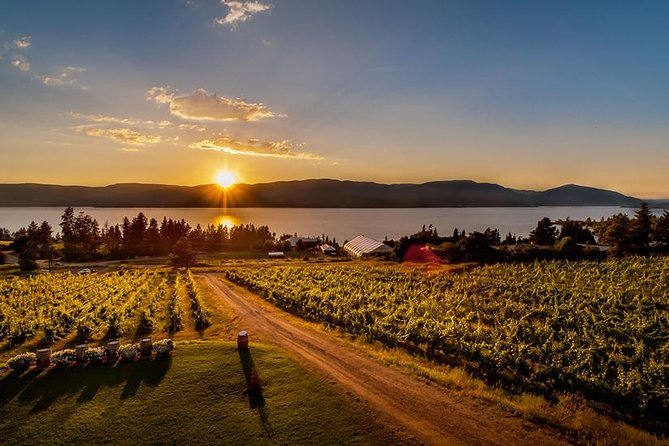 Half Day Wine Tour: Sunset Colors and Unique Flavors