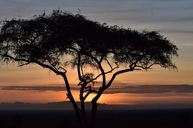 5 Days: Manyara, Serengeti And Ngorongoro Camping Safari.