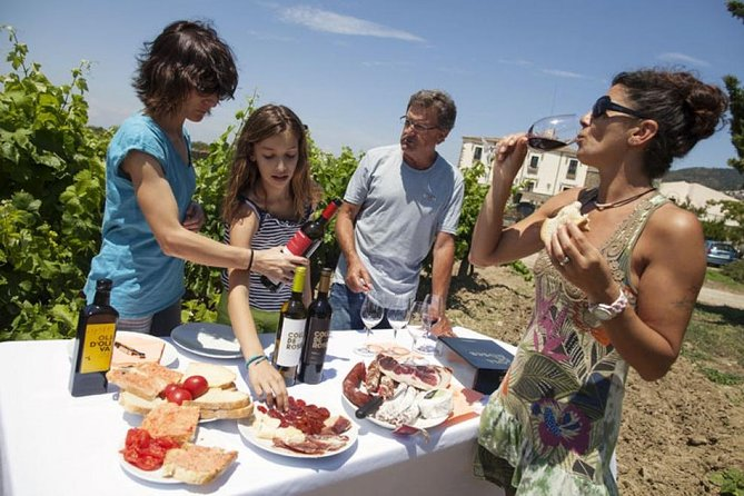 Private 7-Hour Tour of Three Etna Wineries with Tasting from Syracuse photo 1