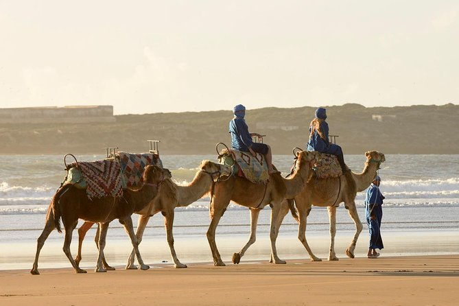 Camel Ride on the Beach of Essaouria