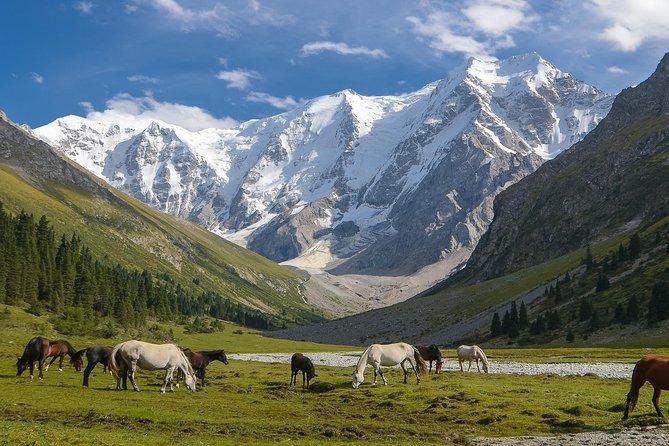 Ala-Kul lake & Karakol Peak - 4 day Trekking