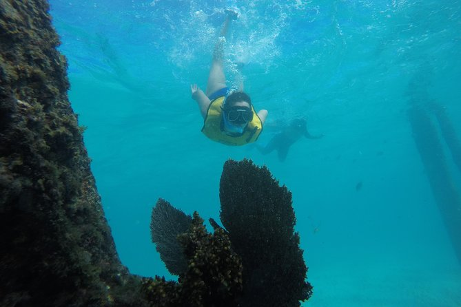 4-in-1 Cancun Snorkeling Tour: Swim with turtles, reef, statues and shipwreck