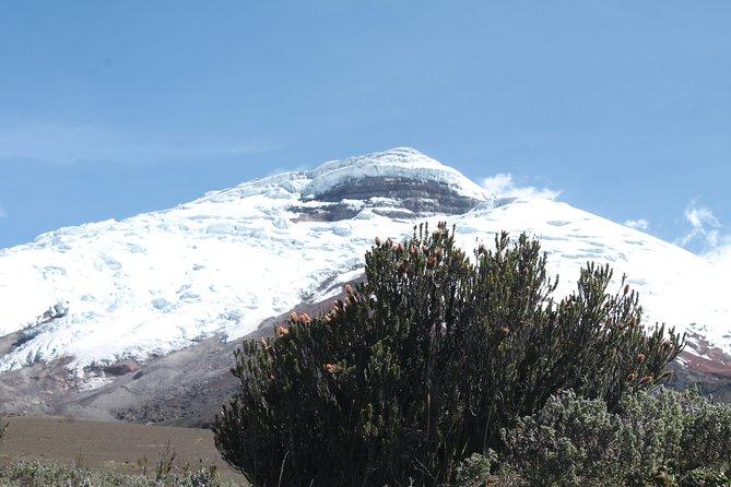 Cotopaxi Volcano Private Day Trip