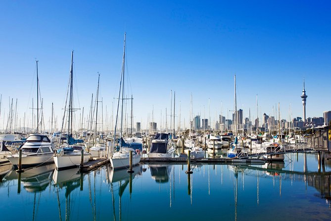 Private Tour: Auckland City and Countryside Tour