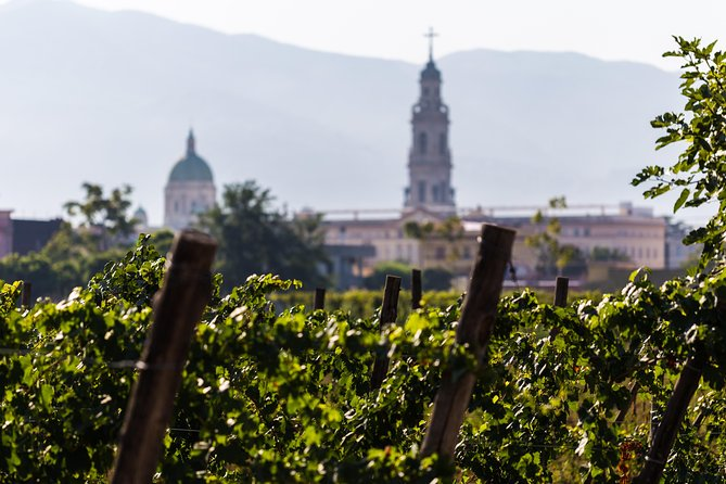 Discover Pompeii With Wine & Food Tasting photo 6