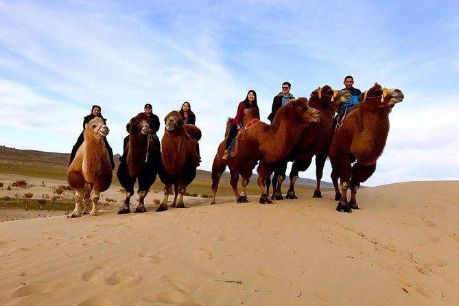 7 Days Classic Mongolian Tour