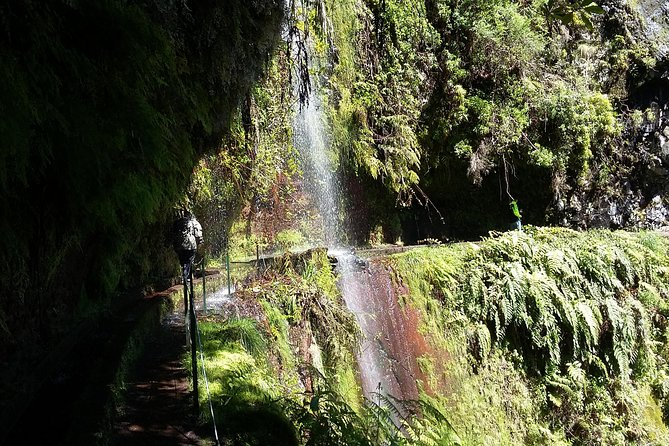 Levada do Rei - Madre of Life small Group Guided Walk photo 11