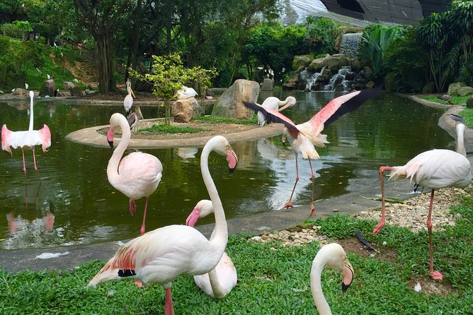 Kuala Lumpur Garden, Park & Museum Tour With Lunch