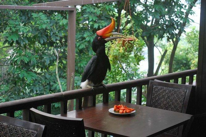 Kuala Lumpur Bird Park Tour Including Transfer