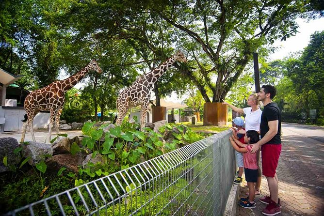 Private Tour : Explore The Best of Animal Attractions in Kuala Lumpur