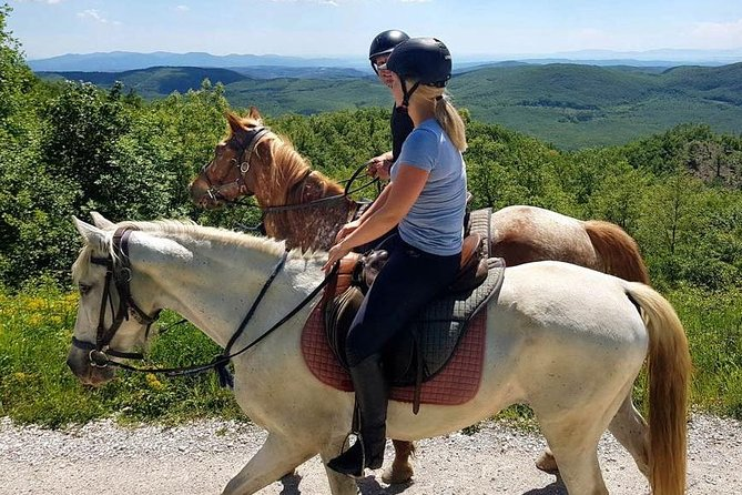 Half-Day Horseback Ride in Tuscany for beginner riders