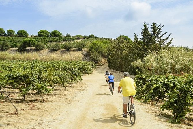 eBike tour from Barcelona's coastline to the Vineyards, wine tasting & Lunch